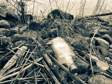 Empty Bottle On Riverbank