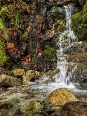 Waterfall Trickles
