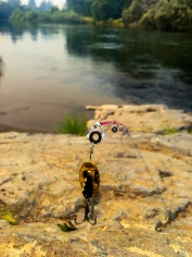 Fishing Pole With Lure
